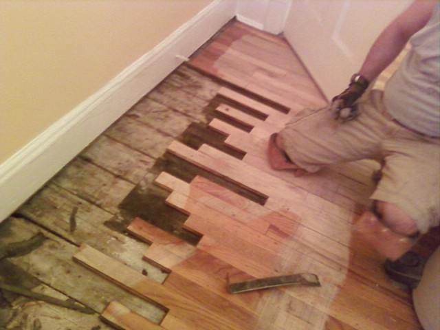 Hardwood Floors And Humidity : ... replacing the wood floors do the same with your wood sub floors